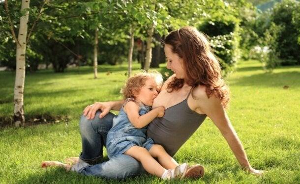mitos sobre a amamentação