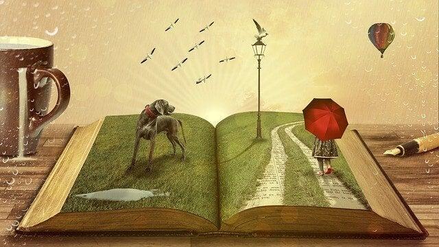 contadora de histórias