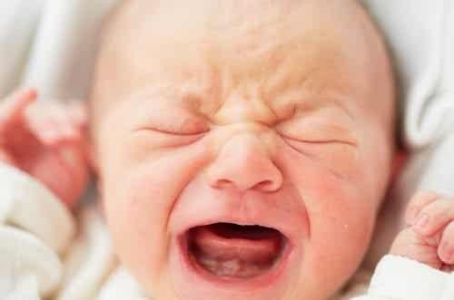 3 Perguntas comuns na primeira semana de vida do seu bebê
