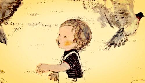 O que se aprende com afeto se lembra com amor