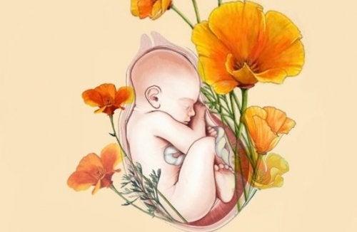 Eu sou o seu bebê. Você mamãe é o meu habitat, meu alimento, meu tudo...