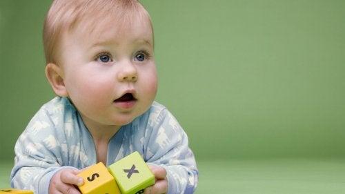 Como escolher os melhores brinquedos para os bebês de 6 a 12 meses