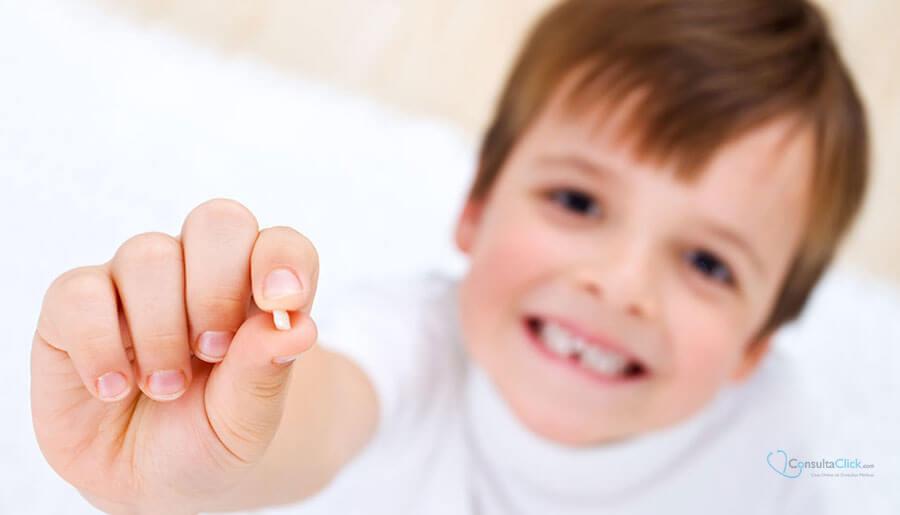 dentes do bebê