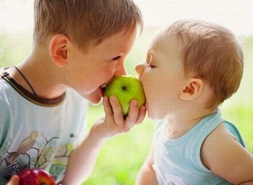 Alimentos que fortalecem o sistema imunológico