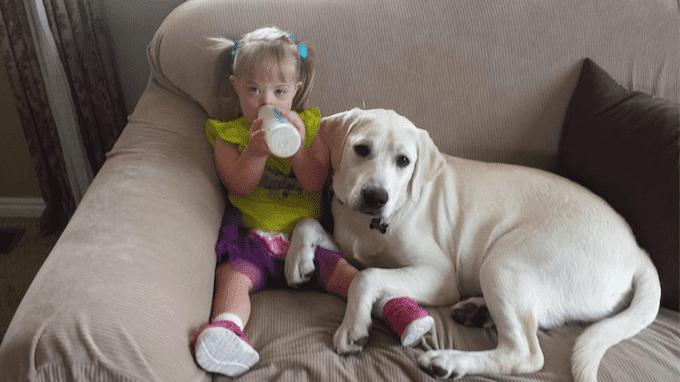 A história de Sadie: a menina com síndrome de Down e o seu cão guardião