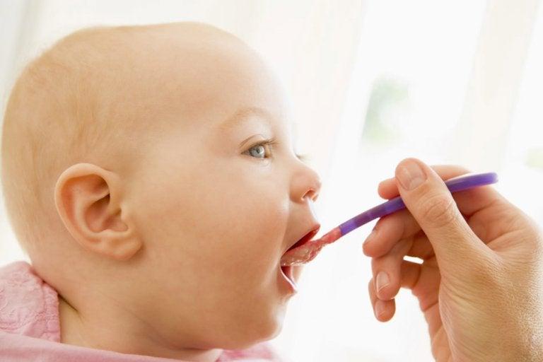 bebê sendo alimentado com alimentos triturados