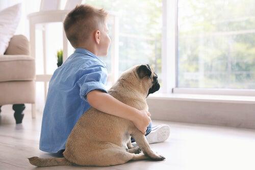 Os melhores cachorros pequenos para crianças
