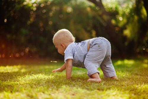 Fase de engatinhar: criança engatinha na grama