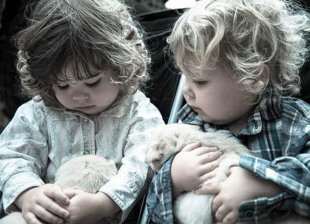 Os melhores animais de estimação para as crianças