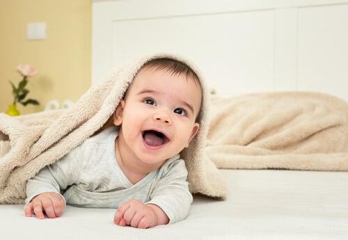 Oitavo mês do bebê: conhecendo!