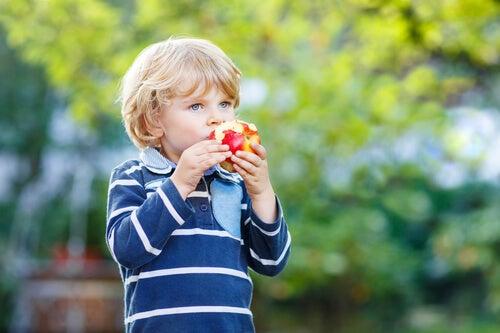 para uma alimentação saudável inclua frutas e verduras