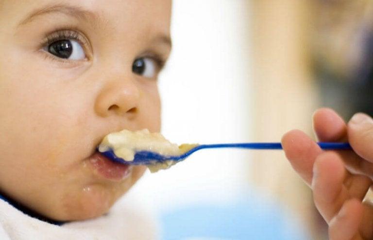 Os primeiros alimentos para oferecer ao bebê
