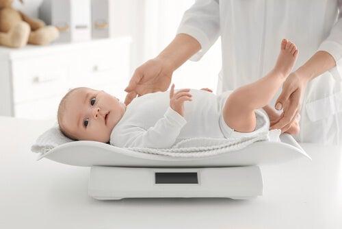 6 recomendações para equilibrar o peso do seu bebê