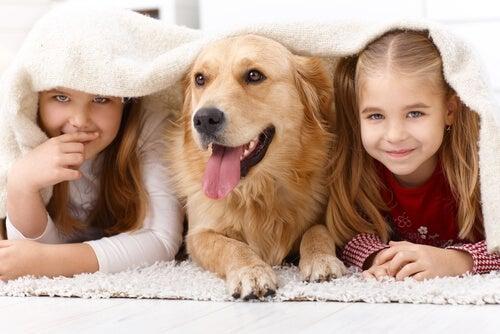 Por que as crianças gostam tanto de animais?