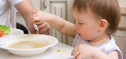 Receitas salgadas para bebês de 9 a 12 meses