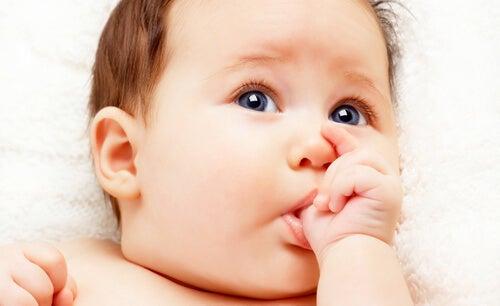 comportamentos do bebê