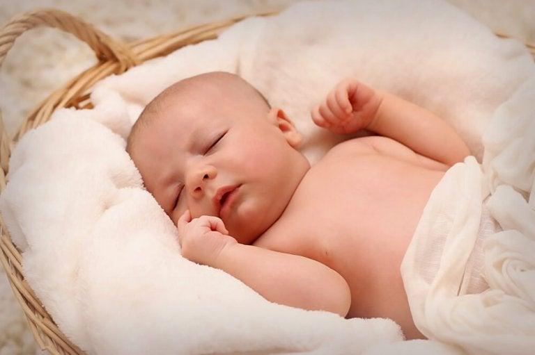 Preferência É normal bebê dormir muito? – Sou Mamãe CO22