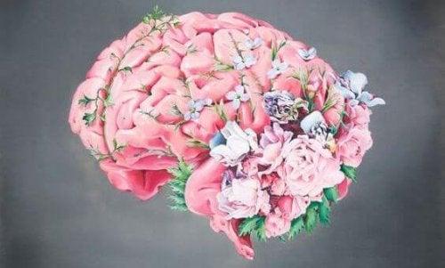 Cérebro, flores