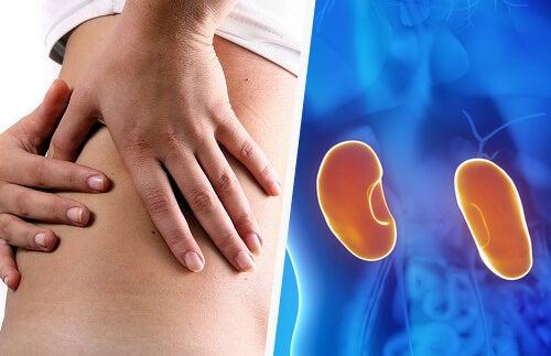 Como a doença renal afeta a gravidez?