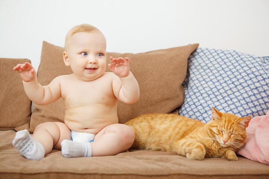 A convivência entre recém-nascidos e animais é positiva?