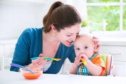 Receitas salgadas para bebês de 6 a 9 meses