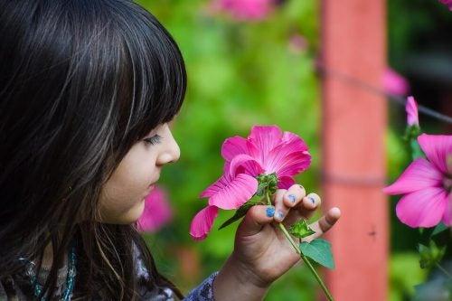 Aulas de botânica para crianças