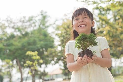 cultivar uma planta a partir das sementes