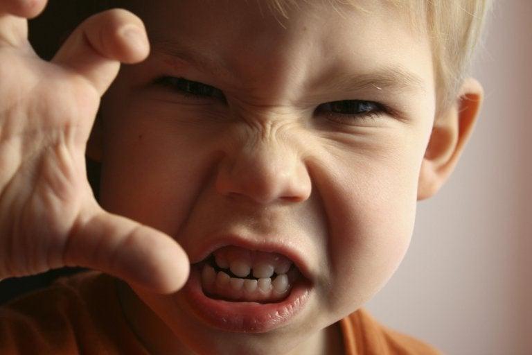 emoções básicas das crianças