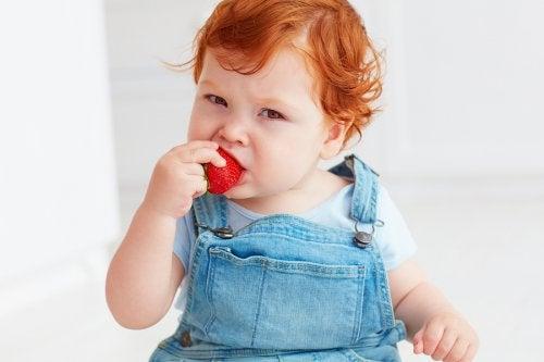 bebê comendo morango