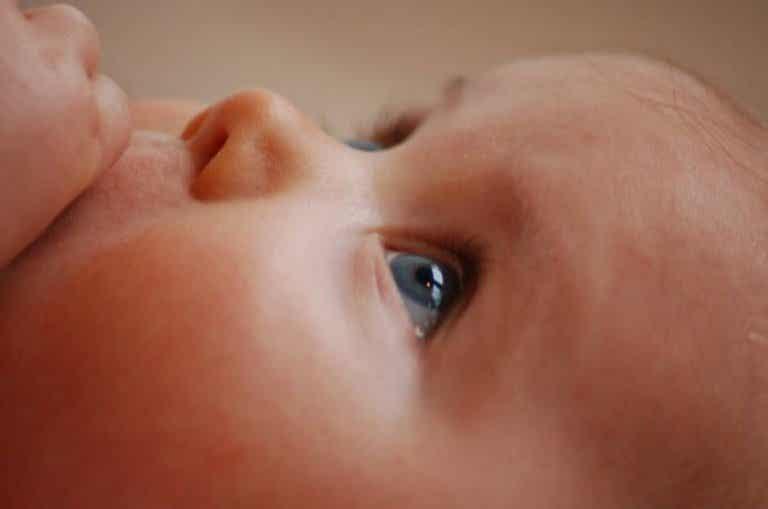 O que influencia a genética do bebê?
