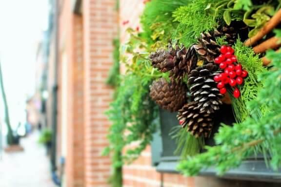 6 ideias para decorar o jardim no Natal