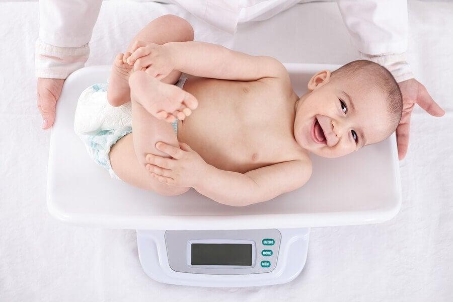 Ganho de peso em bebês durante o primeiro ano de vida