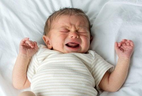 bebê não chora