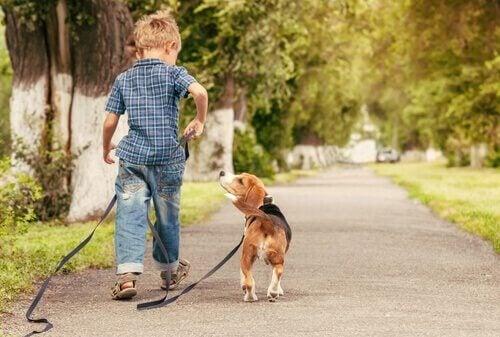 criança passeando com um cão