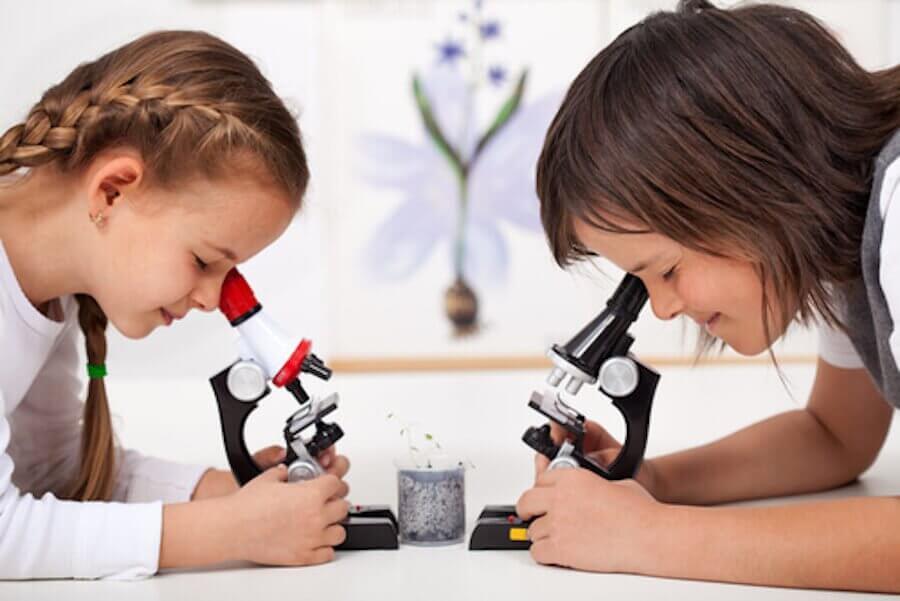 Os experimentos para as crianças aprenderem ciência são uma forma muito divertida de aprender.