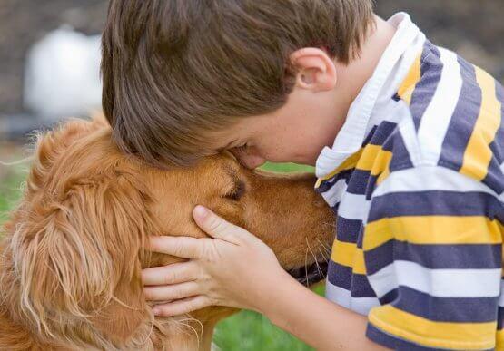Seu filho ama pets? Conheça os benefícios de ter animais