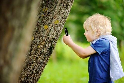 A educação ao ar livre com crianças oferece oportunidades para explorar e se divertir.