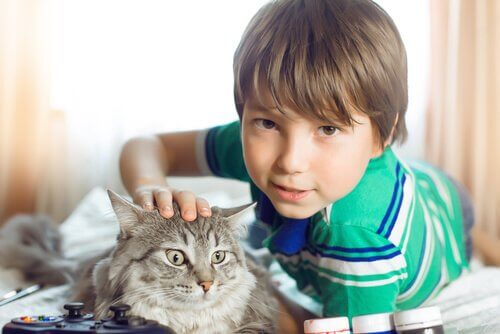 menino com um gato