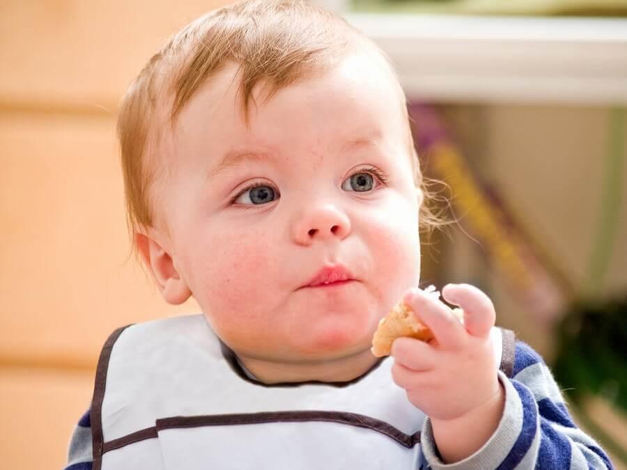 Quando introduzir os cereais na dieta do bebê?