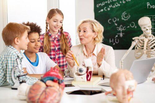 Conceitos básicos de neuroeducação em sala de aula