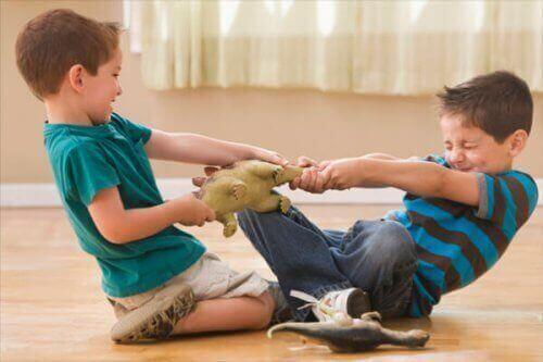 irmãos brigando por brinquedo