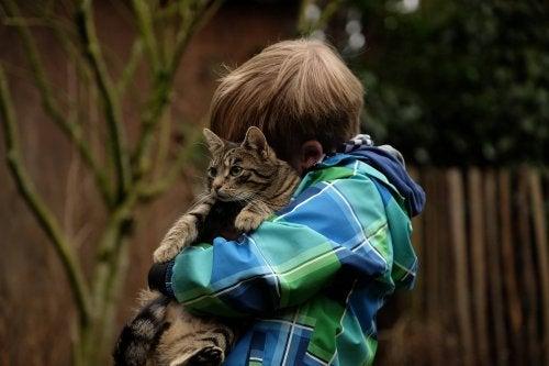 menino abraça o gato