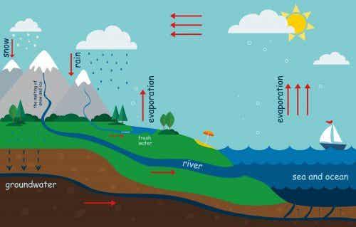 Como explicar o ciclo da água para as crianças