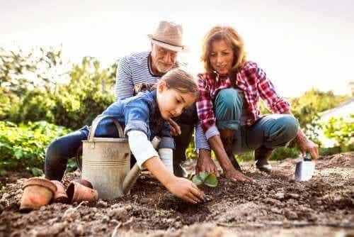 O papel dos avós