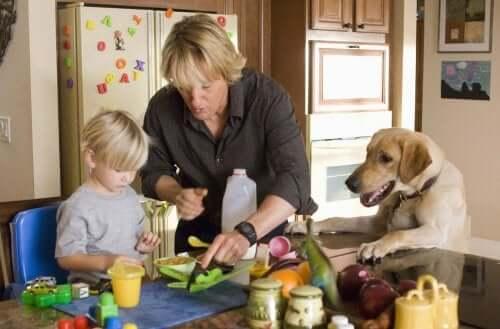 Filmes que ensinam às crianças o amor pelos animais