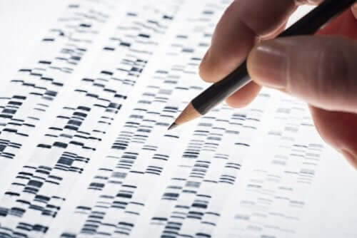 Teste genético pré-natal: características e vantagens