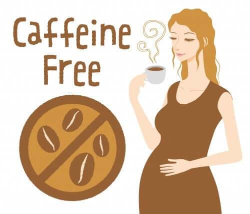 a cafeína durante a gravidez