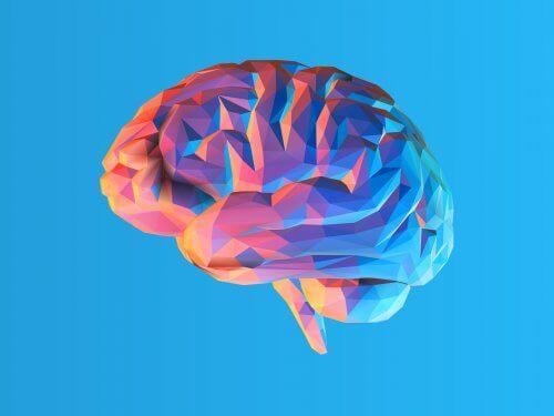 O que é a teoria da carga cognitiva