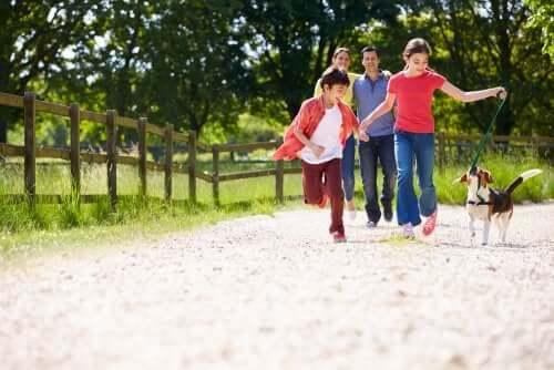 As crianças em famílias reconstituídas