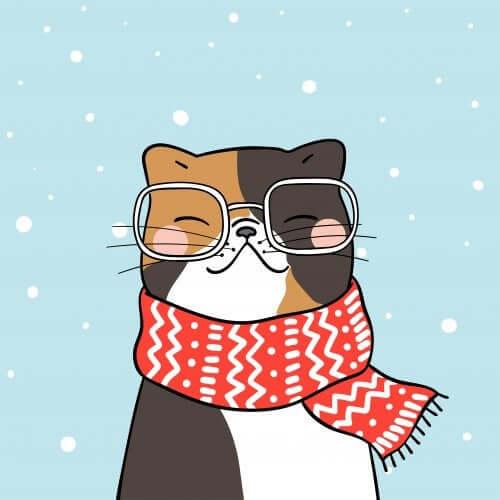 livros com um gato como protagonista
